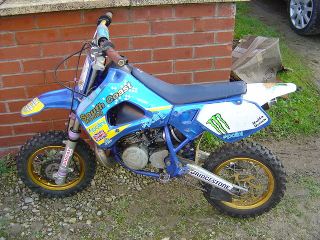 Pit Bike Poline 50cc Motor Bike Breaking